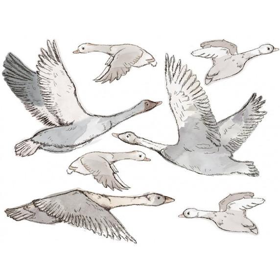 Falmatrica ANIMALS Geese - Ludak