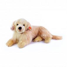 Plüss kutya retviever 53 cm Előnézet