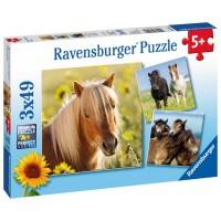 Ravensburger Kedves lovak 3x49 db-os (08011)
