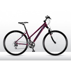 Vedora downtown Cross Lady C7 női kerékpár  Előnézet
